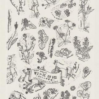 野の花図鑑1