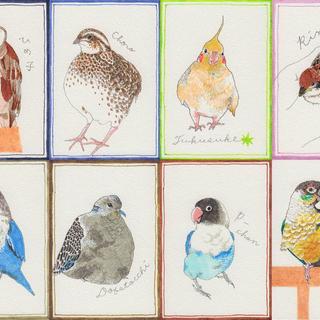 鳥のスケッチ1