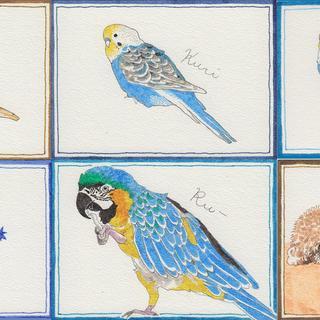 鳥のスケッチ2