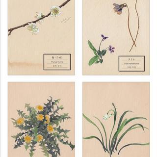 「花が、ある」〜春あつめ〜