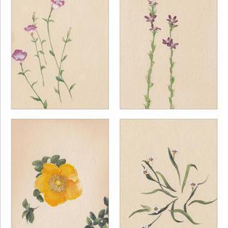 「花が、ある」〜春 - 夏〜