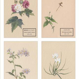 「花が、ある」〜秋〜