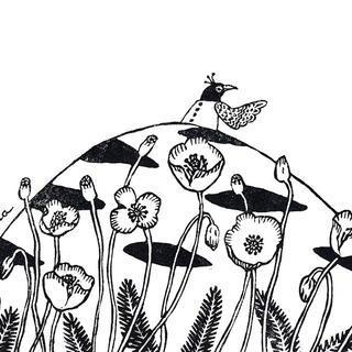 鳥と花(ナガミヒナゲシ)